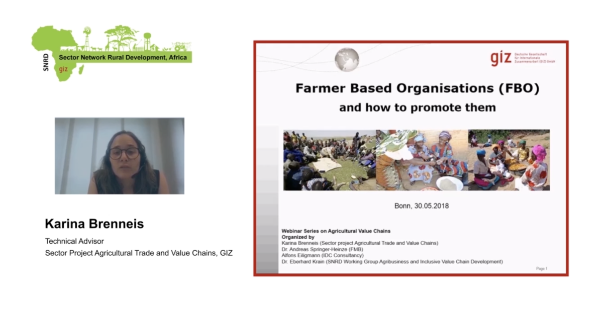Agribusiness and Inclusive Value Chain Development – SNRD Africa